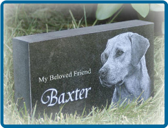 Absolute Black Granite 12x24x2 Pet Headstone